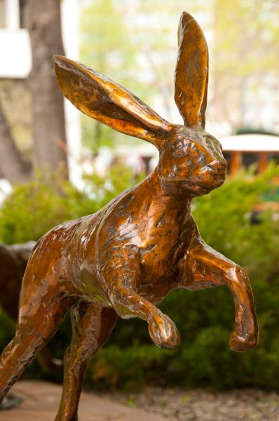 028-Leaping-Hare.jpg